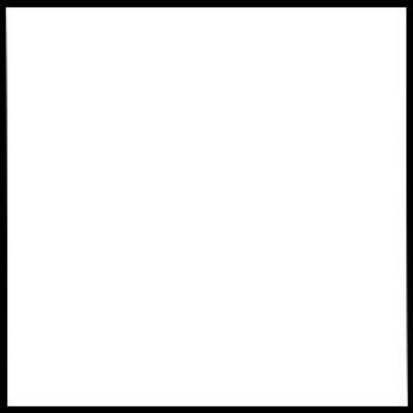 "Rosco 48""x25' Roll Cinegel #3004 1/2 Density Soft Frost Filter"