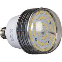 Savage LED Studio Lamp (50W, 120V)
