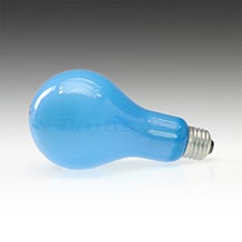 Ushio EBW PS-25 NO. B2/BLUE Incandescent Projector Light Bulb 4840K (500W/120V)
