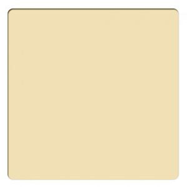 "Schneider Optics 4 x 4"" Solid Color Gold 2 Water White Glass Filter"