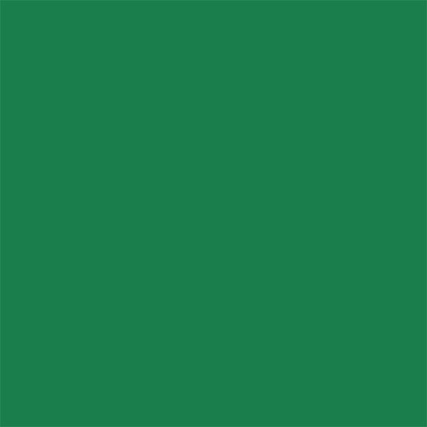 "Savage 86"" x 36' Widetone Seamless Background Paper - #35 Holly"