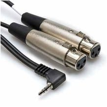 Hosa Technology Stereo Mini Angled Male to Two 3-Pin XLR Female Y-Cable - 5'