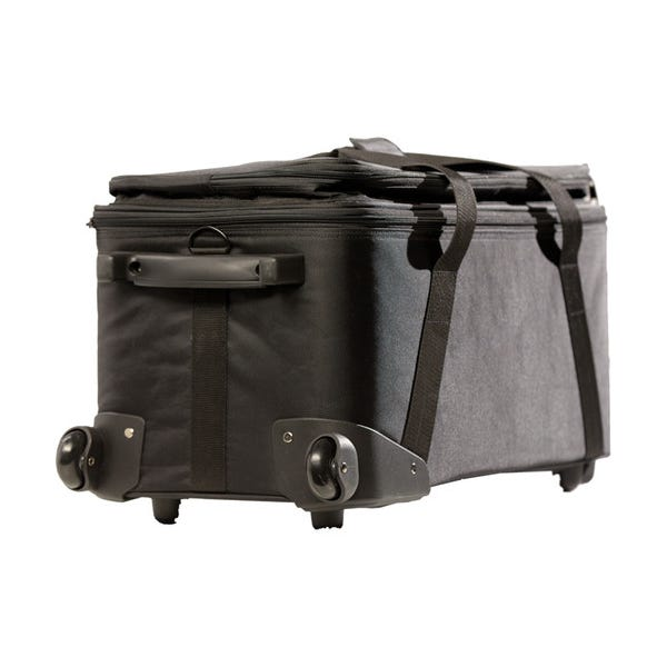 DMG Lumiere MINI Switch Rigid Bag
