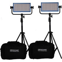 Dracast LED500 Pro DayLight 2-Light Kit With Gold Mount Battery Plates