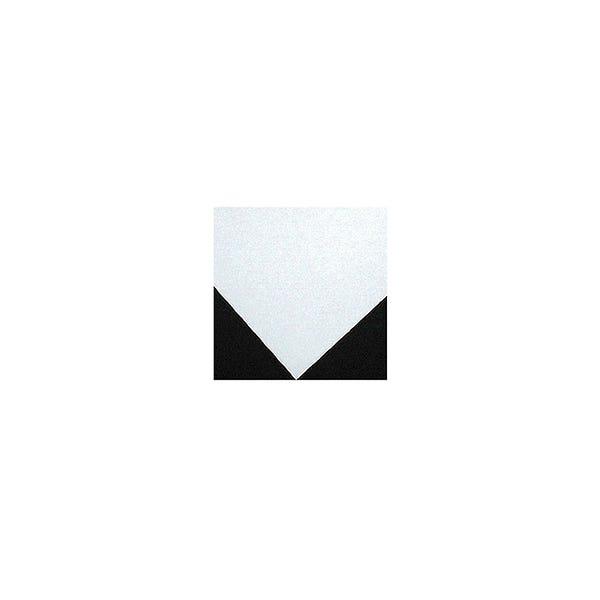 Savage 32 x 40 In. Sheet Showcard - Black/White