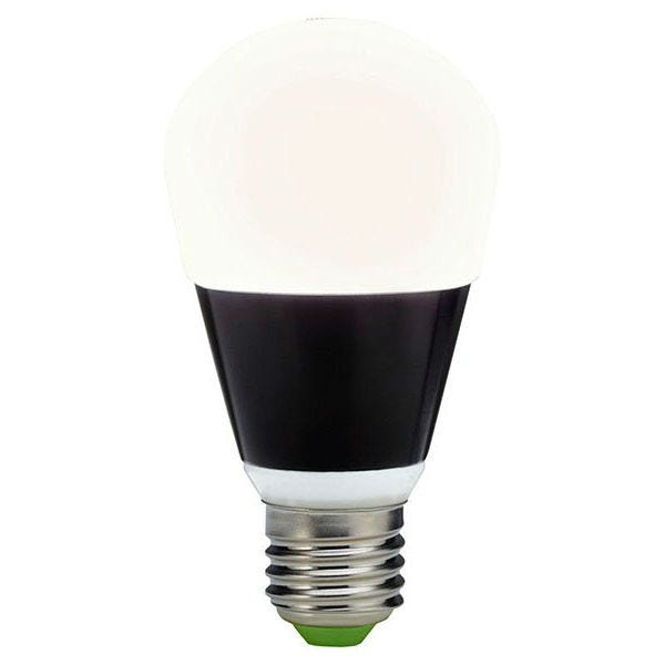Quasar Science A-LED Medium Base Light Bulb 6 Watt (Color Temperature)